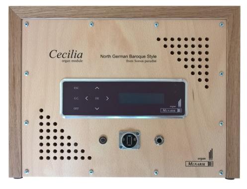 cecilia-back